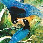 Losing Altitude Book — Birds of Paradise