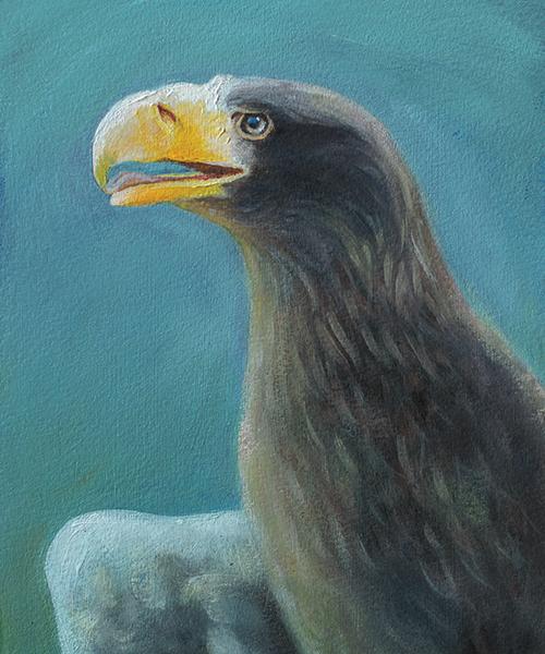 Losing Altitude Book — Stellar's Sea Eagle