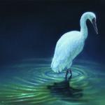 Losing Altitude Book — Siberian Crane